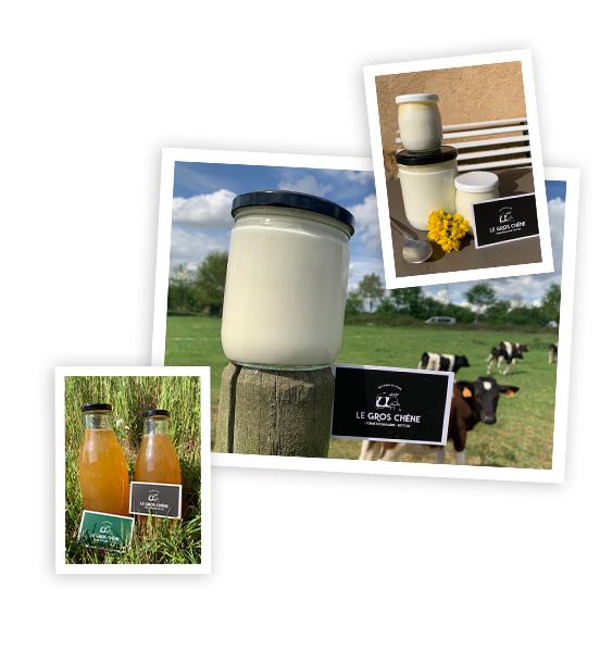 Vente de produits laitiers directement en ferme urbaine à Betton près de Rennes